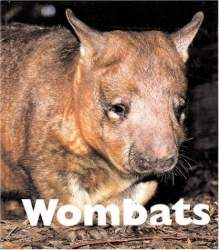 Wombats Naturebook by Mary Berendes