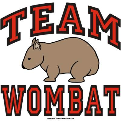 Team Wombat Design