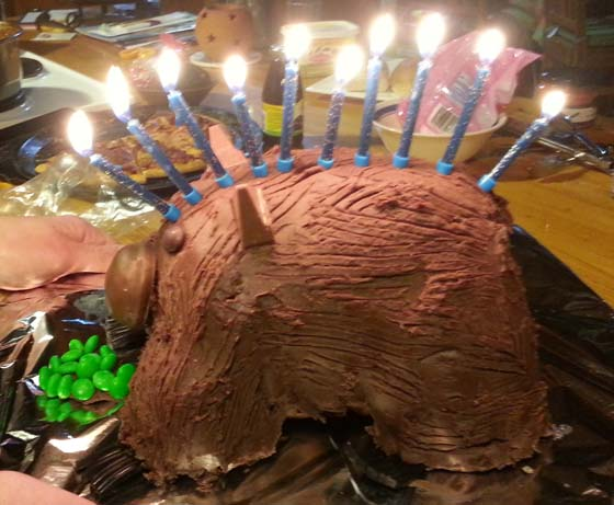 Wombat birthday cake with candles