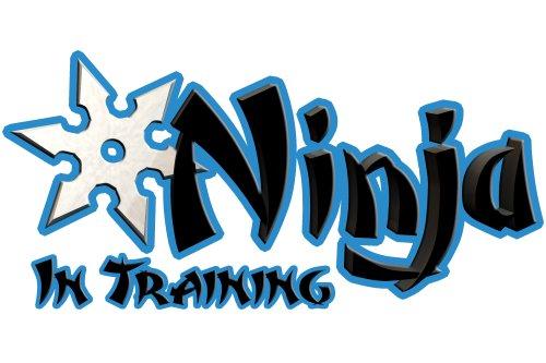 Ninja in Training Design