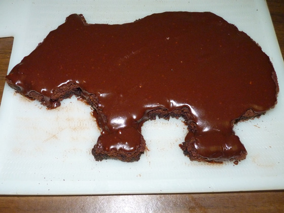 Wombat Brownie frosted