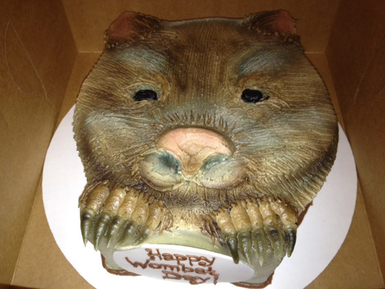 Realistic Wombat Day cake made by Lelie