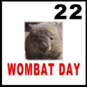 Wombat Day Sticker version 1